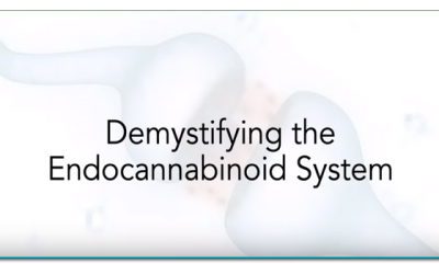Dr Ruth Ross: Demystifying the endocannabinoid system
