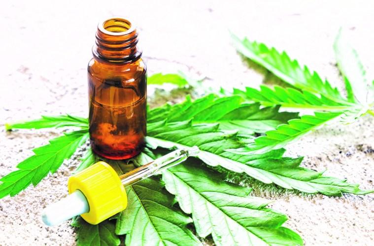 Growth of CBD Market